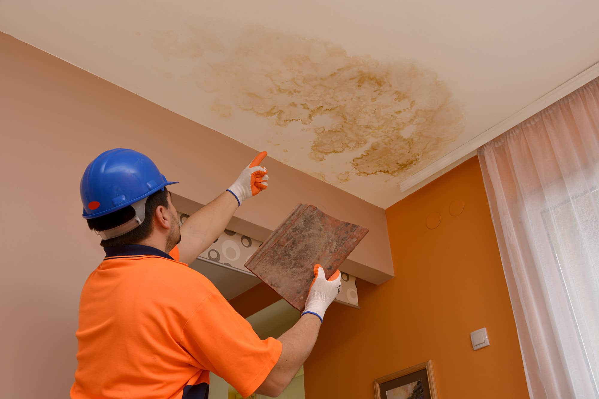 How Home Inspectors Check for Mold